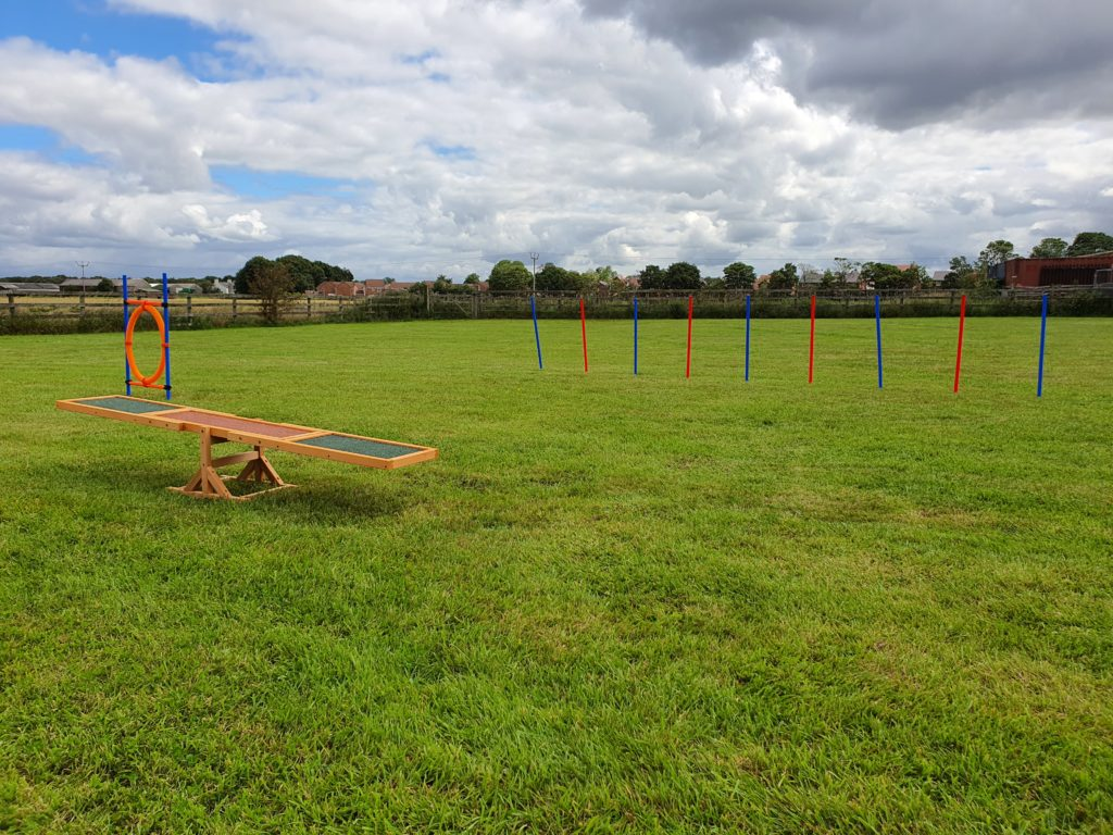 Agility Equipment on the Paddock