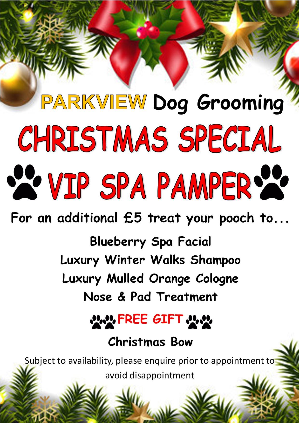 Christmas VIP Pamper
